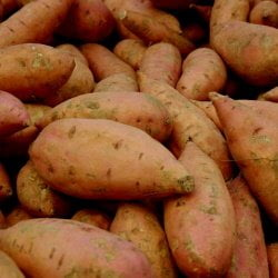 stack of sweet potatoes